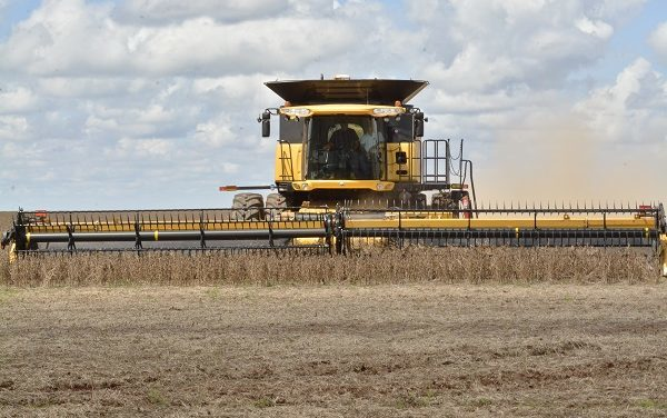 Programa BNDES Crédito Rural já liberou R$ 1,3 bilhão em 2020