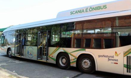 São Paulo quer ônibus limpos