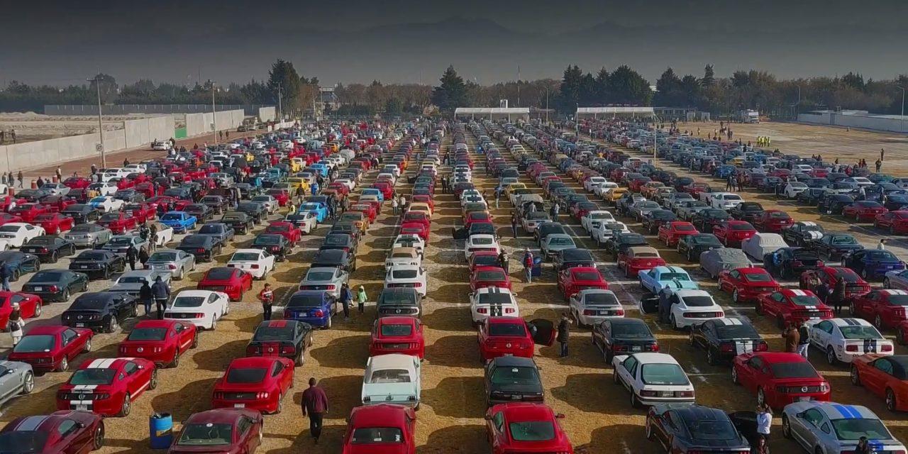 Recorde de 960 Mustangs no México