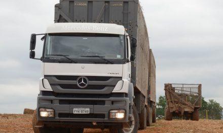 Ouro Verde compra 140 Mercedes-Benz Axor