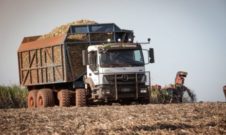 Produtores de biodiesel defendem qualidade e cronograma do B15