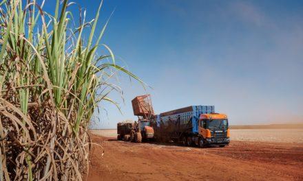 Scania projeta continuidade do crescimento em 2019