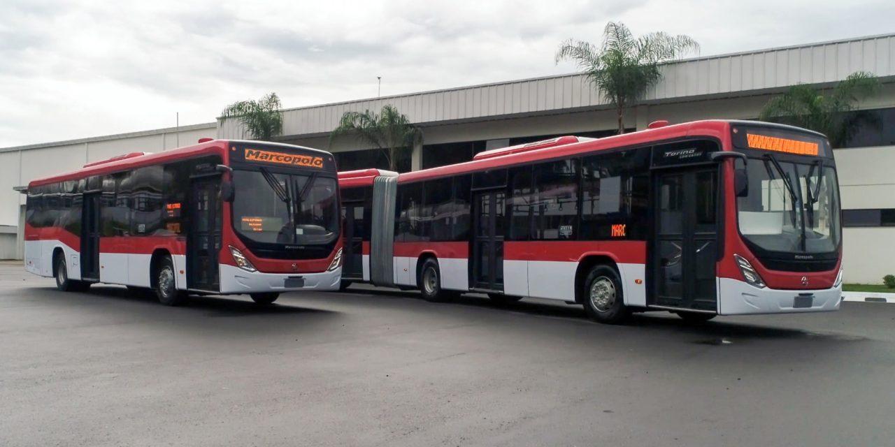 Marcopolo embarca 150 ônibus para o Chile