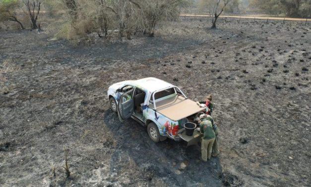 Com queimada, Toyota reforça campanha do projeto Arara Azul