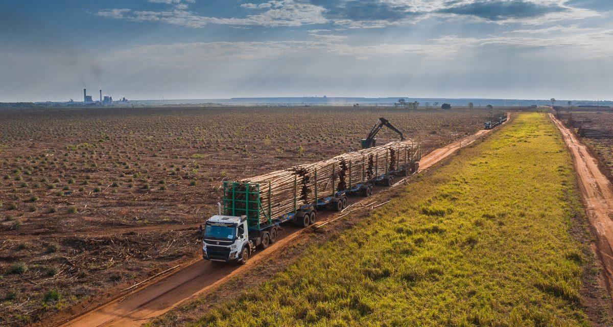 Volvo FMX aumenta a produtividade da Suzano