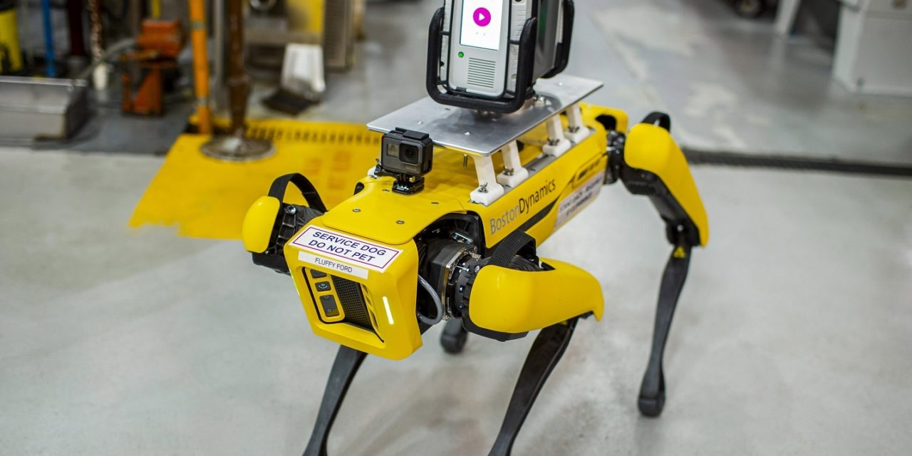 Ford testa cães robôs em programa piloto nos EUA