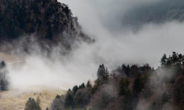 Anfavea prevê alta de 25% na produção, mas ainda vê neblina pela frente
