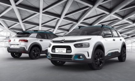 Citroën lança série C4 Cactus Rip Curl