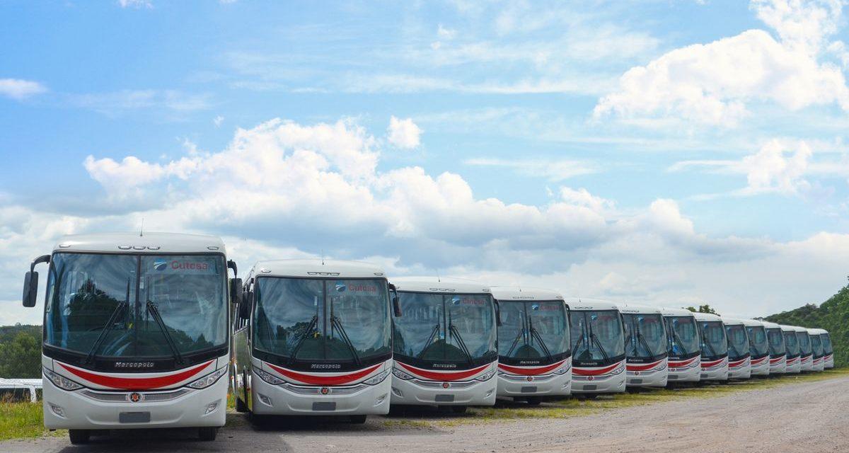 Marcopolo e Mercedes-Benz renovam frota de ônibus no Uruguai
